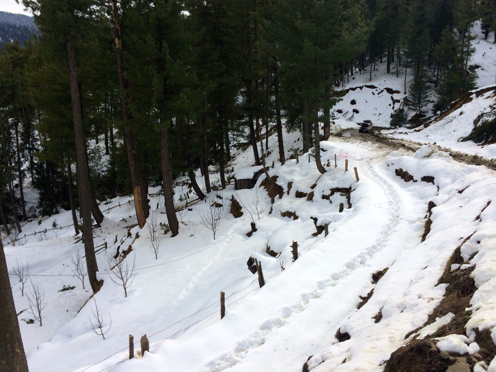 Snow road in Himachal Kharapathar.
