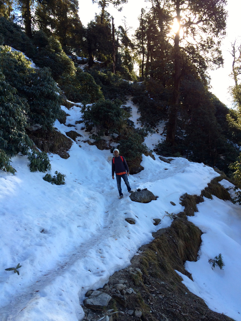 trail-near-galu-temple-triund.jpg