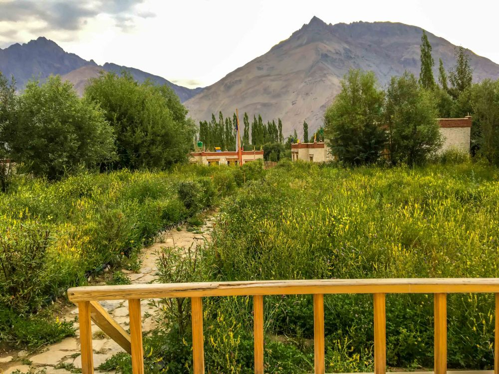 Oyo rooms Hunder Nubra Valley