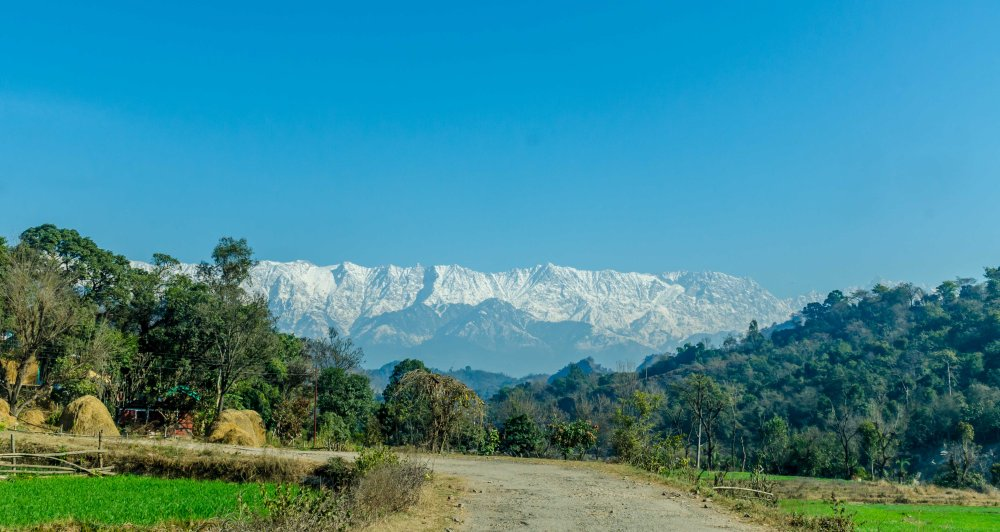 Trilokpur