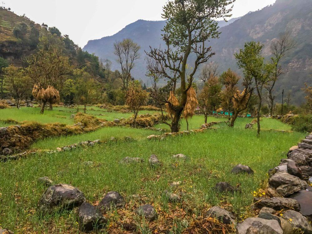 Mandal Village