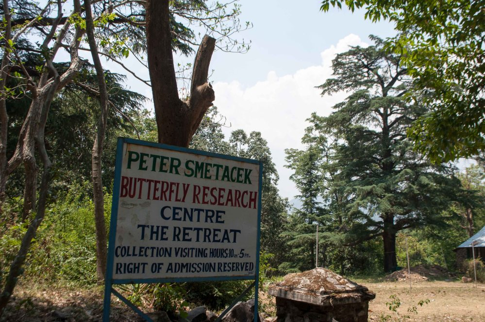 Butterfly Research Centre Bhimtal