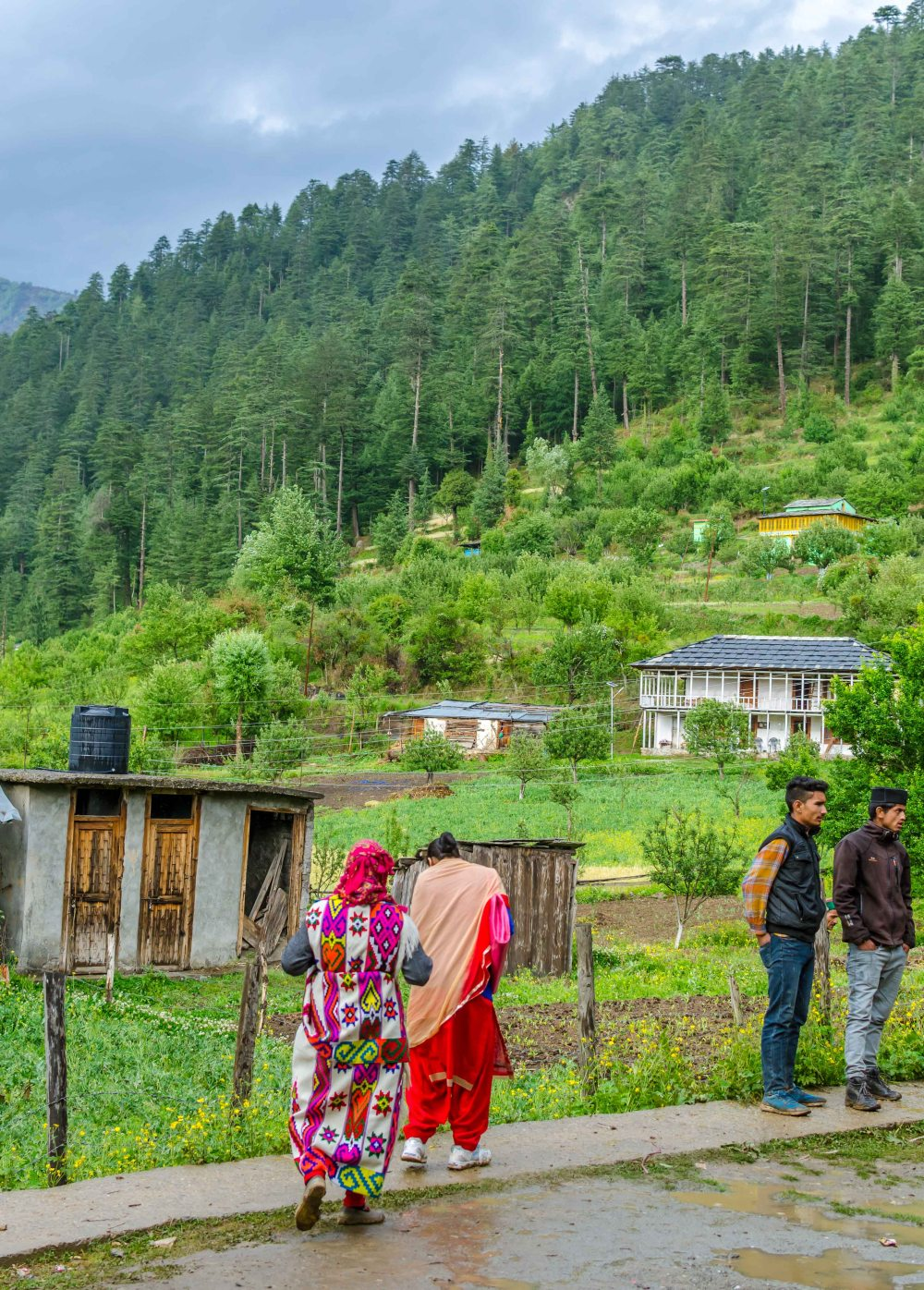 Traditional Himachali Village Festival in Kullu Valley